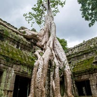Viaje de incentivo a Camboya