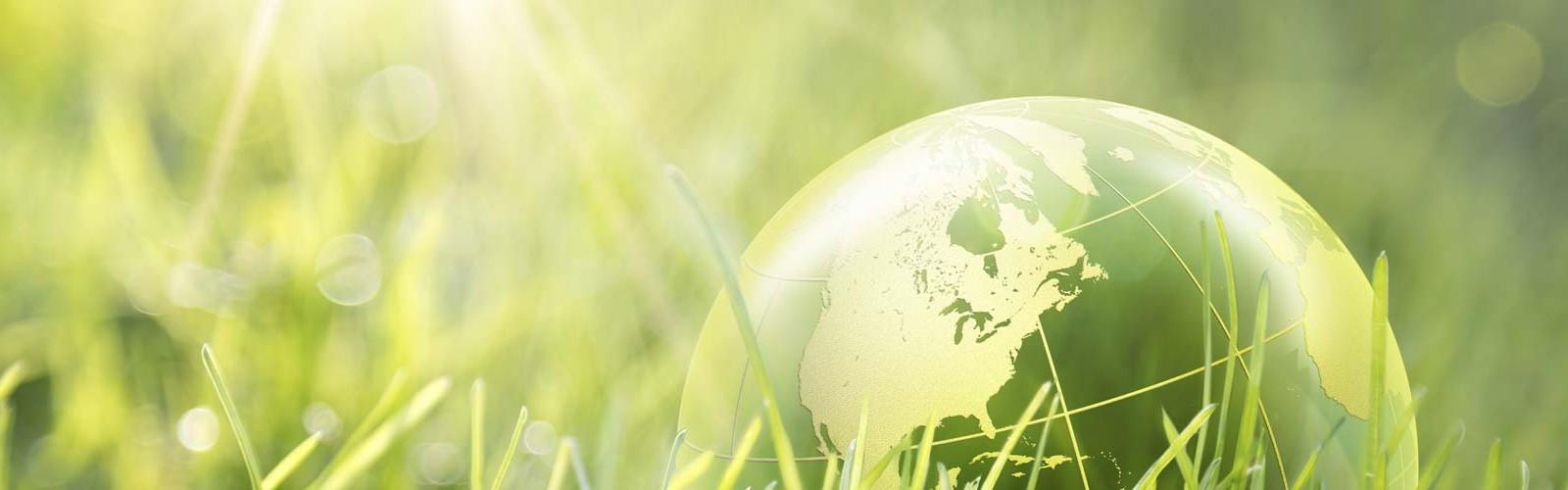 Viaje de incentivos sostenible