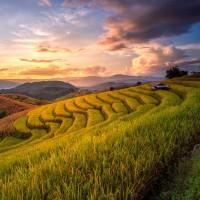 Viaje de incentivo a Indonesia